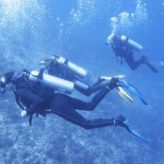 Responsible Diving – Ways to Make the Most of Your Diving Holiday