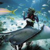 Scuba Diving Buoyancy Control Tips