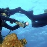 Things You Will Learn In A Tech Diving Course