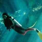 Annual Deaths caused by Scuba Diving